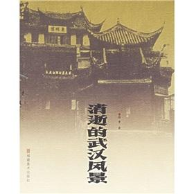 disappearing Wuhan Landscape(Chinese Edition): XU LU