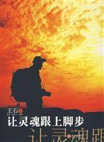 soul to keep pace(Chinese Edition): WANG SHI