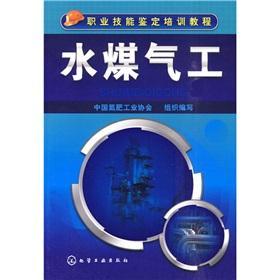 Water Gas industrial(Chinese Edition): ZHONG GUO DAN FEI GONG YE XIE HUI