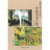 magnificent underground palace of art: cave trip to China (2nd edition) [paperback](Chinese Edition...