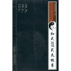 and type 108-style Taijiquan (with CD-ROM)(Chinese Edition): HE YOU LU BIAN ZHU WU GE YI