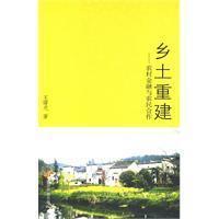 local reconstruction(Chinese Edition): WANG SHU GUANG