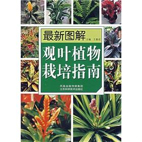Graphic New foliage plant cultivation guide(Chinese Edition): WANG YI CHENG