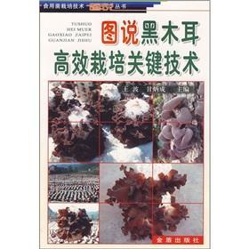 drawings of key technologies and high yield black fungus(Chinese Edition): WANG BO
