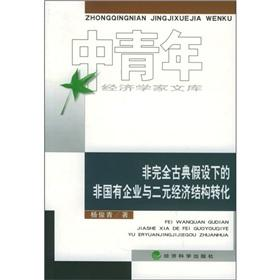 non-classical assumption of completely non-state enterprises and: YANG JUN QING