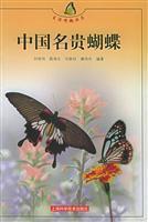 Chinese rare butterfly: LIU XIAN WEI BIAN ZHU