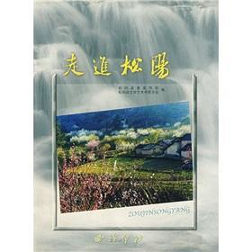 About Songyang(Chinese Edition): SONG YANG XIAN WEI XUAN CHUAN BU