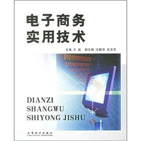 e-practical techniques(Chinese Edition): WANG BIN ZHU