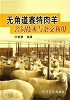 hornless Dorset sheep - - feeding techniques and use of hybrid: REN ZHI HUI