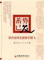 Ready has been made - the modern credit support to take off in Nanning(Chinese Edition): CHEN WEN ...