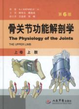 Arm - anatomy of bone and joint: KA PAN DE