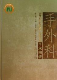 Hand Surgery Atlas (2nd Series) (fine)(Chinese Edition): WANG SHU HUAN // GU YU DONG // CHENG GUO ...