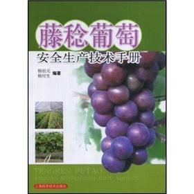 Safety Fujiminori Technical Manual(Chinese Edition): YANG ZHI YUAN // YANG FU SHENG