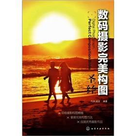Digital Photography Bible perfect composition(Chinese Edition): FUN SHI JUE