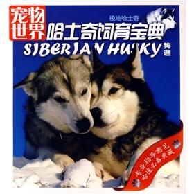 shi yin qin - AbeBooks