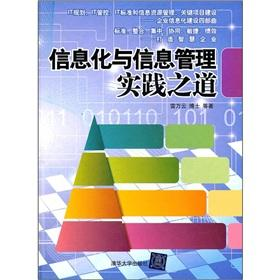 Road of the information technology and information management practice(Chinese Edition): LEI WAN ...