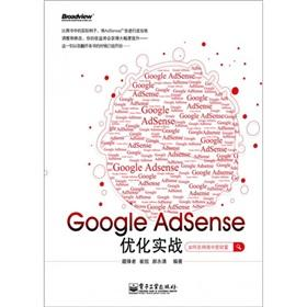 Google Adsense optimization of actual combat(Chinese Edition): CANG FENG ZHE
