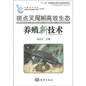 Channel Catfish efficient ecological farming [Paperback](Chinese Edition): MA DA WEN