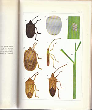Insects and Diseases of Rice Plants in Japan: Kawada, Akira and Others