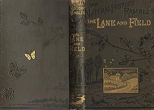 Natural History Rambles: Lane and Field: Wood, J. G.