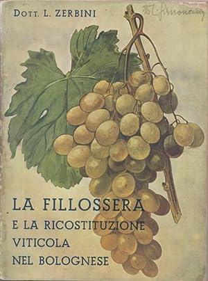 La Fillossera e la ricostituzione viticola nel: ZERBINI, LUIGI.