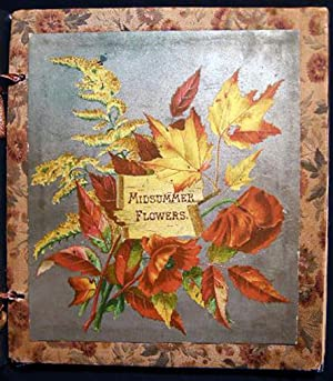 Midsummer Flowers: Designs of Maple Leaves; Clematis;: Skelding, Susie Barstow