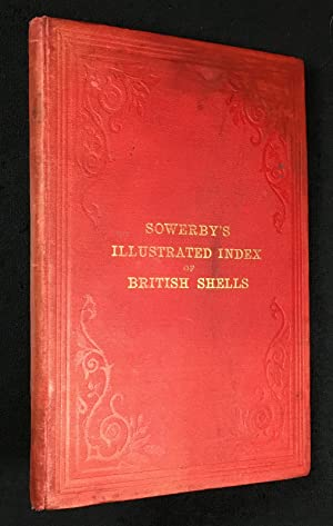 Illustrated Index of British Shells. Containing figures: Sowerby, G. B.: