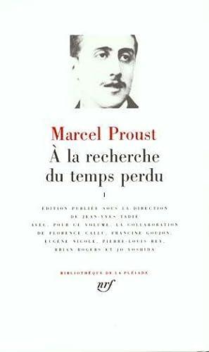 a la recherche du temps perdu t1: Proust, Marcel