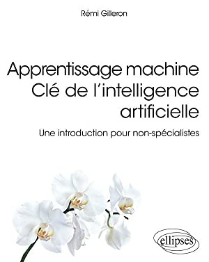 apprentissage machine clé de l'intelligence artificielle - une introduction pour non-spécialistes