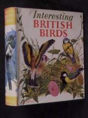 Interesting British Birds: Daly, Kathleen N