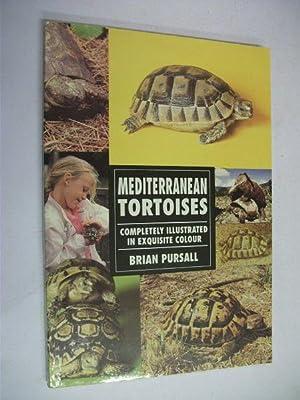 Mediterranean Tortoises: Brian Pursall
