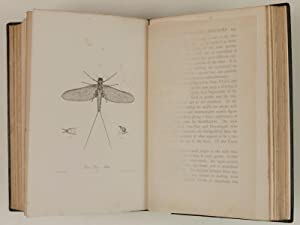 The Dry-Fly Man's Handbook A complete manual. Including the fisherman's entomology and the ...