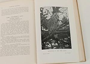 A Handbook of the Birds of Tasmania and Its Dependencies: Littler, Frank Mervyn. F.E.S.