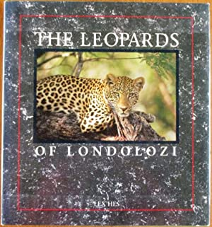 The Leopards of Londolozi: Hes, Lex