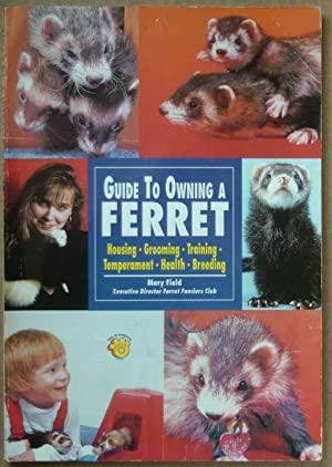 Guide to Owning a Ferret