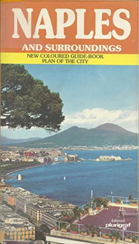 NAPLES AND SURROUNDINGS: New coloured guide-book Plan of the city