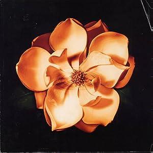 Magnolia Promo Book: Anderson, Paul Thomas