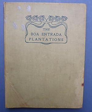 The Boa Entrada Plantations - S Thomé,: Monteiro De Mendonca,