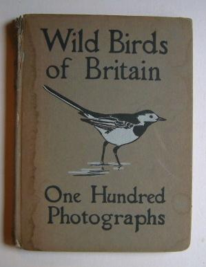 Through the Camera - Wild Birds of Britain - One Hundred Photographs