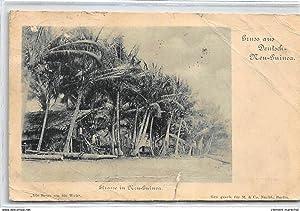 Carte postale ancienne PAPOUASIE Nlle GUINEE : strasse in new-guinea, gruss aus deutsch-new-guinea