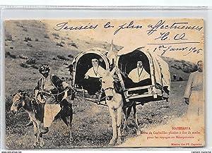Carte postale ancienne ARMENIE : mahhaffa sorte de corbeilles placées a dos de mulet pour les ...