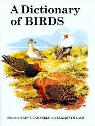 Dictionary of BIRDS, A