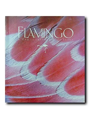 FLAMINGO. A Photographer's Odyssey