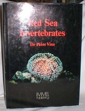 Red Sea Invertebrates: Vine, Dr. Peter