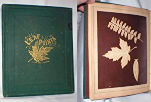 Leaf Prints: Or Glimpses at Photography: Simes, Charles F.