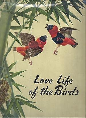 LOVE LIFE OF THE BIRDS: Andrade, Carlos Selva