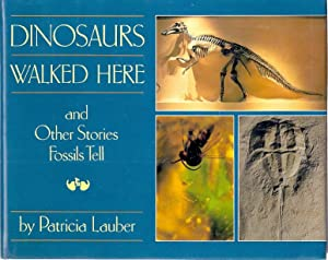 DINOSAURS WALKED HERE AND OTHER STORIES FOSSILS TELL: Lauber, Patricia