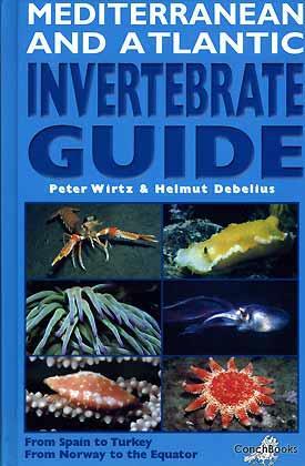 Mediterranean and Atlantic Invertebrate Guide - from: Wirtz, P. &