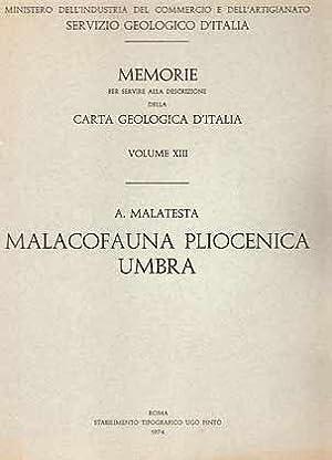 Malacofauna Pliocenica Umbra: Malatesta, A.