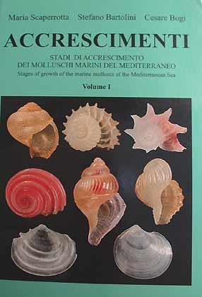 Accrescimenti - Stadi di accrescimento dei Molluschi marini del Mediterraneo - Stages of growth of ...